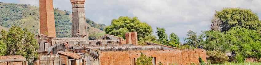 Tamazula