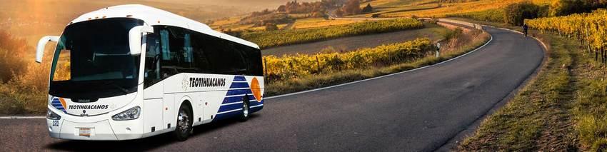Autobuses Teotihuacán