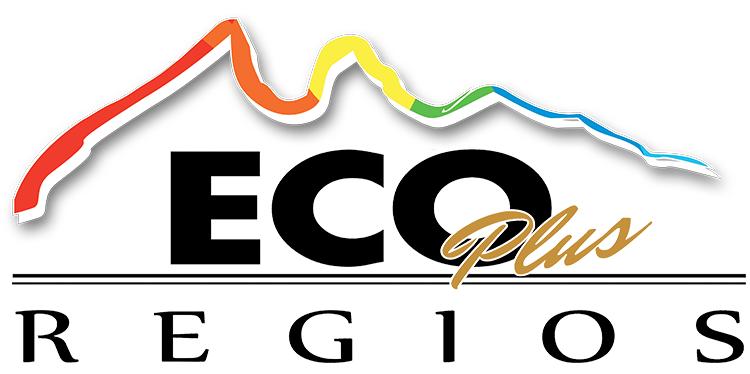 Autobuses Eco Plus Regios